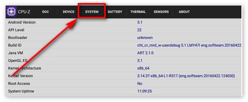Раздел Система в CPU-Z
